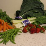 First time CSA Members