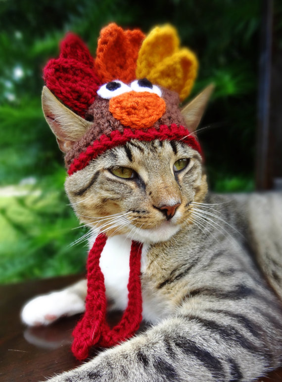 Turkey Cat Halloween Costume