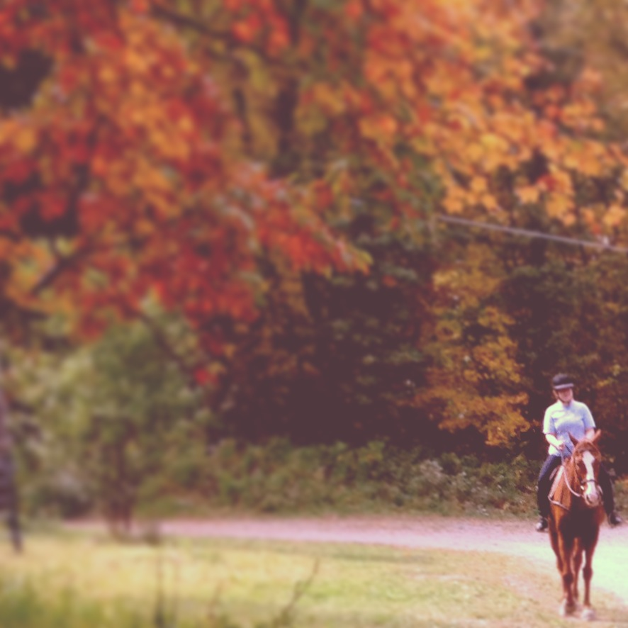 Horse Riding in Walden, NY