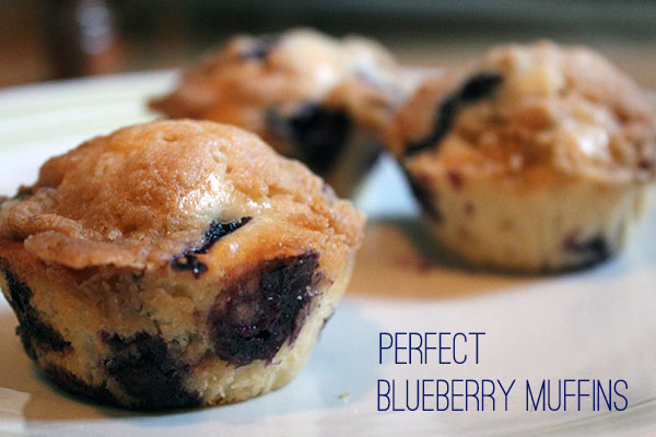 perfect muffins