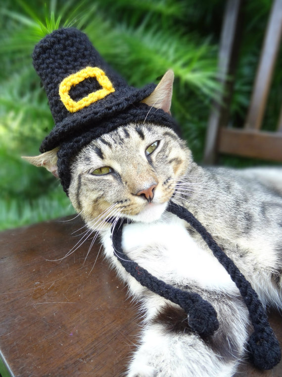 Pilgrim Hat Cat Costume
