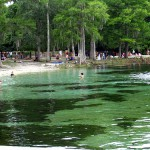 weekend adventures: wakulla springs