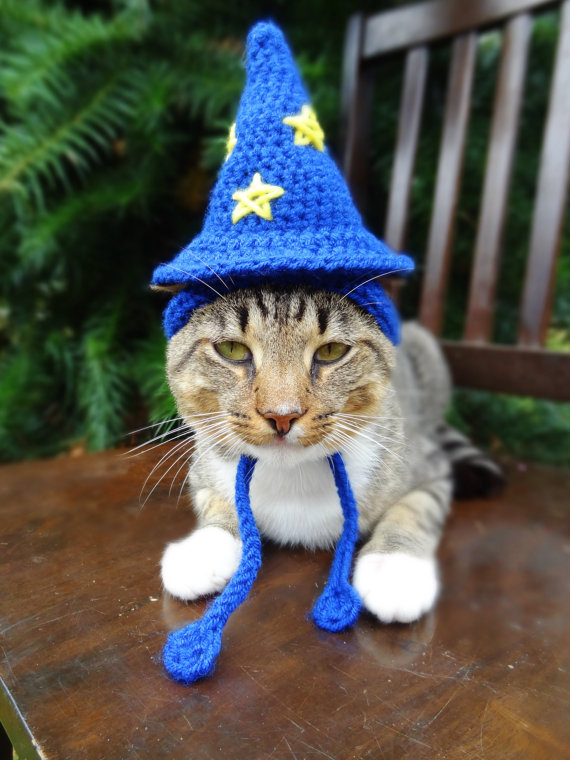 Wizard Cat Costume